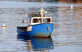 recreational cod fishing