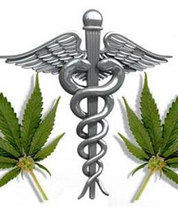 medical marijuana for chronic pain