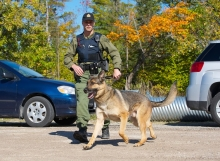drug sniffing dog enforcement search