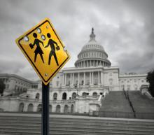 congressional election gun laws