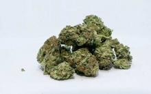 marijuana decriminalization in new hampshire