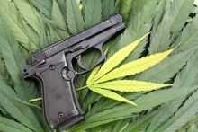 medical marijuana and guns