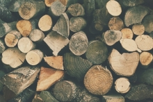 NH renewable energy biomass